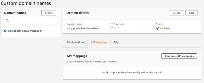 API mapping the new custom domain